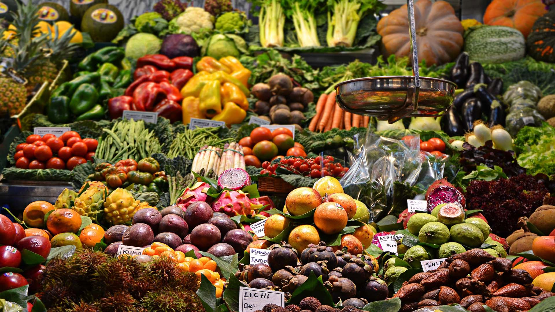 Proteins: The Building Blocks of Body and Its Vegetarian Sources